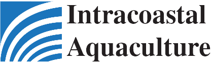 Intracoastal Aquaculture - Your Source for Quality Hard Clam Seed